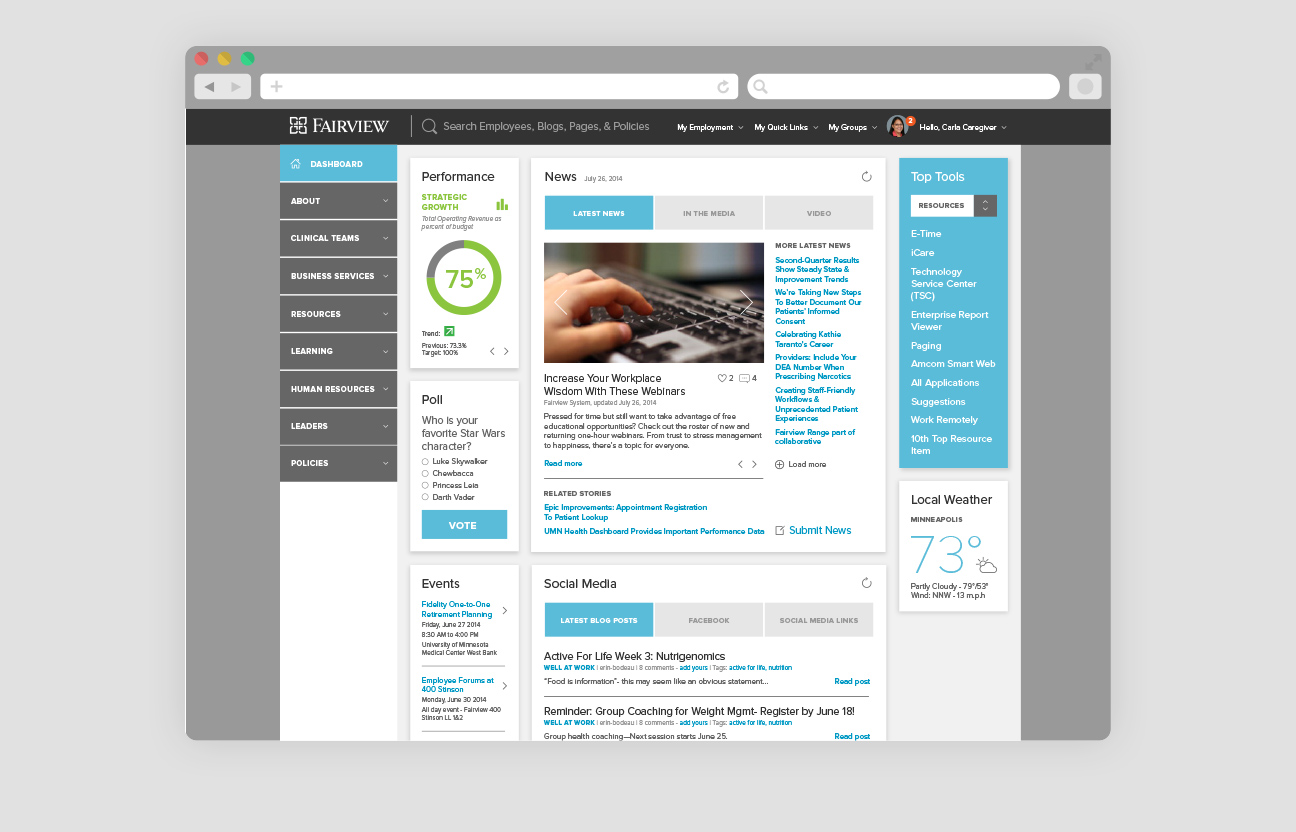 Fairview Intranet - Detail